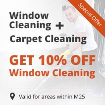 Carpet Cleaning + 10% OFF Professional Window Cleaning